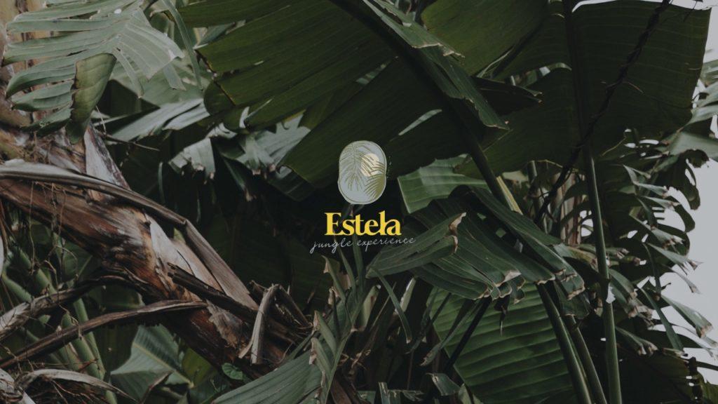 Estela-branding