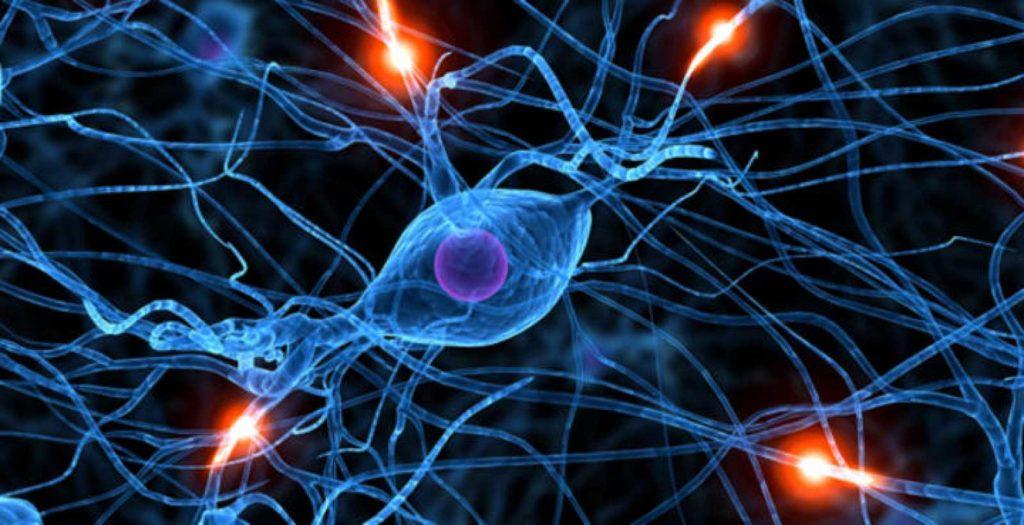neuro-tips